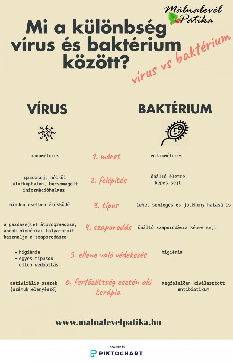 vírus baktérium